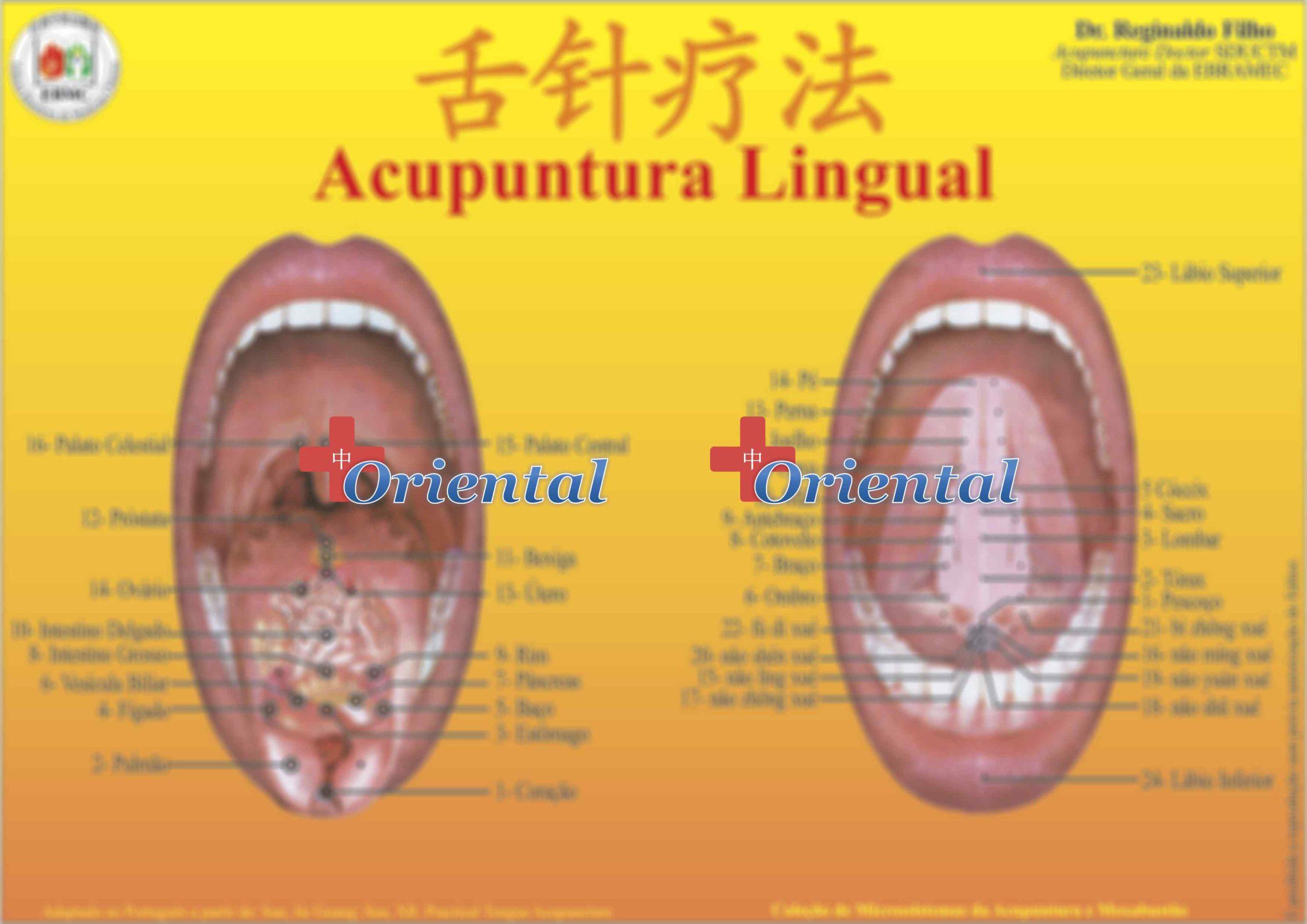 Mapa Lingual