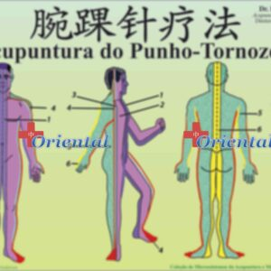 Mapa Punho e Tornozelo